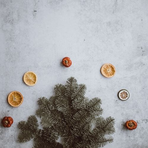 christmas-worldremit-pine-and-fruit