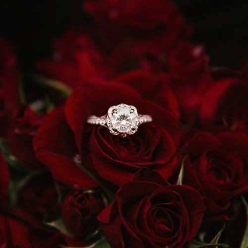 valentines-day-jared-engagement-ring-roses